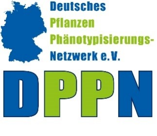 DPPN Logo
